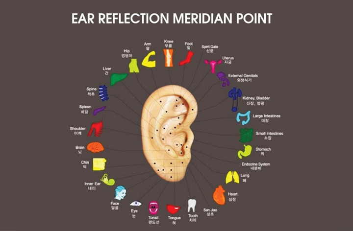 Ear Reflexology natural health and beauty remedy